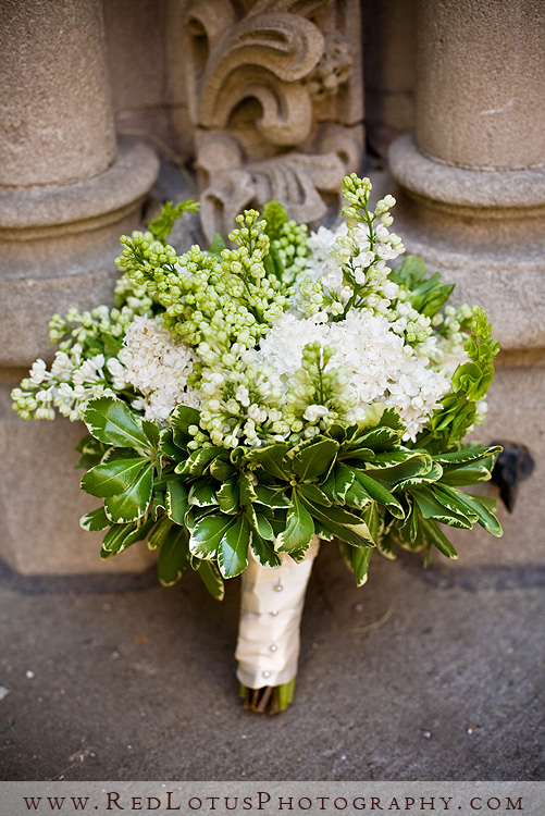 Bridal Bouquet Plant Pruning : A b baby shower late jan on seeded