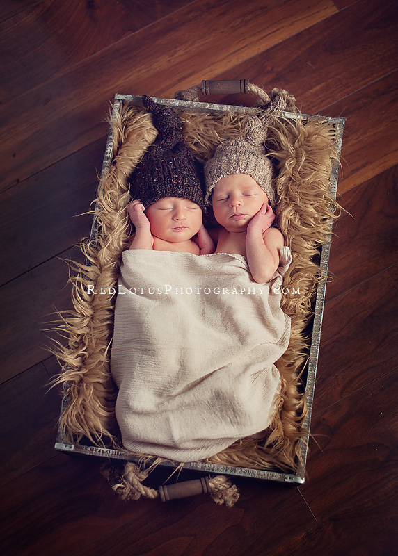 twin baby photographer