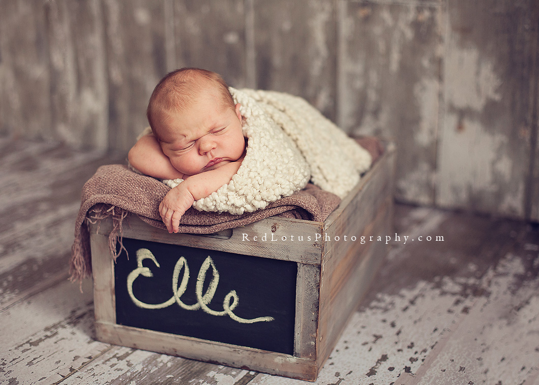 natural light newborn photography in a studio