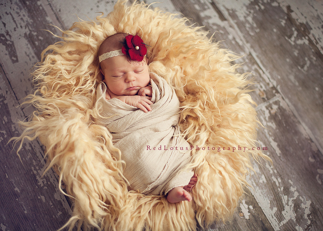 unique and beautiful newborn photos with natural light in a studio