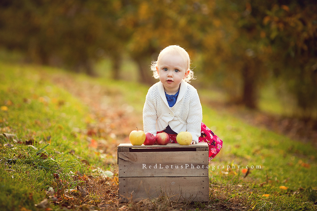 Beautiful Childrens Photography Red Lotus Photography Blog
