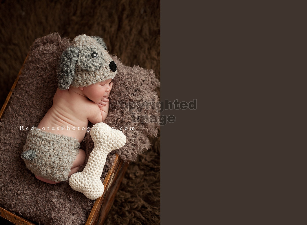 newborn photography prop puppy hat and diaper cover