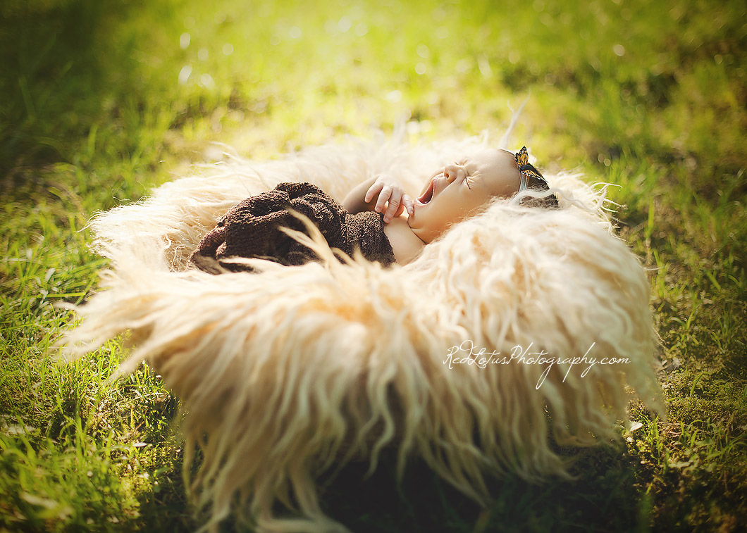 outdoor newborn photography nature