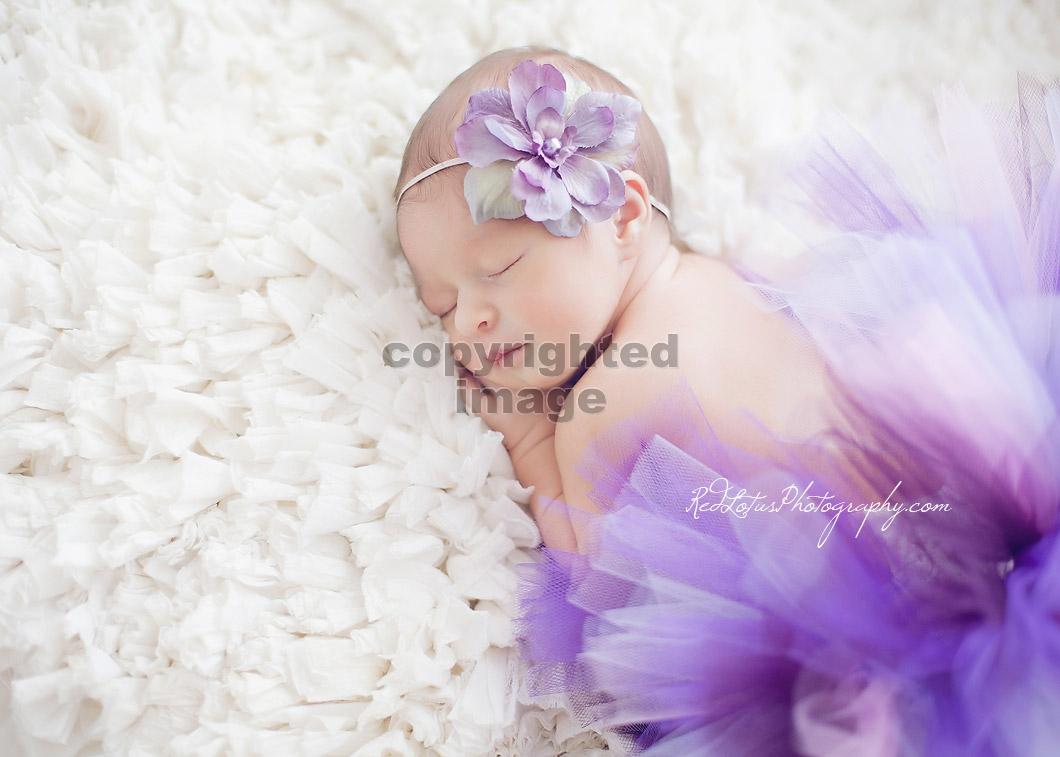 Baby-photographer-pittsburgh-11