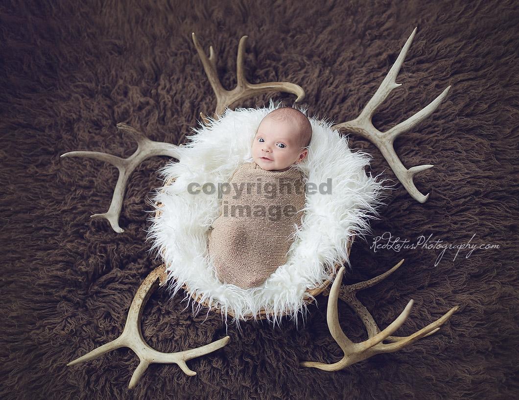 baby-photographer-pittsburgh-01