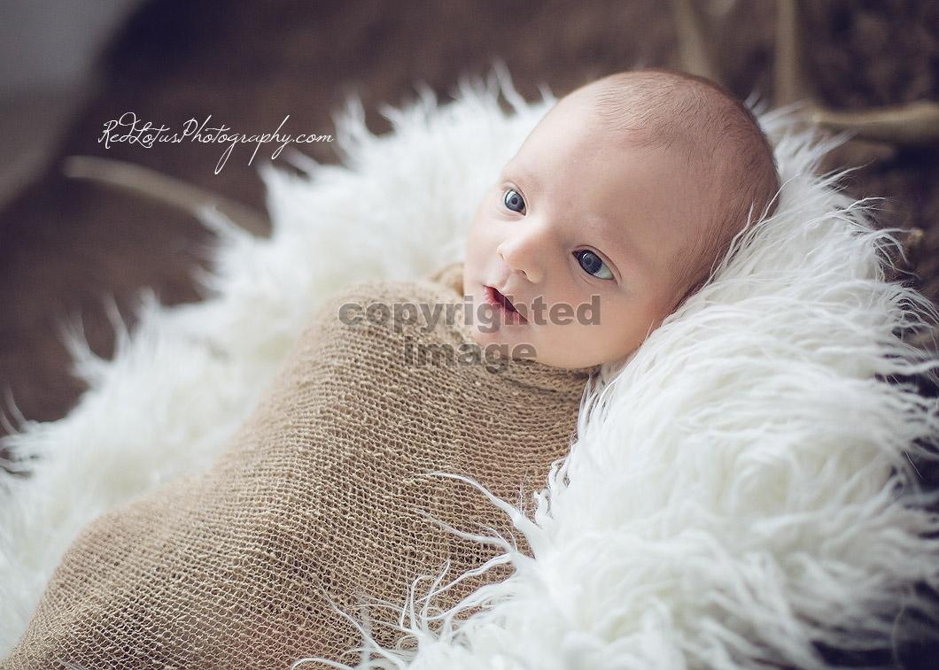 baby-photographer-pittsburgh-03