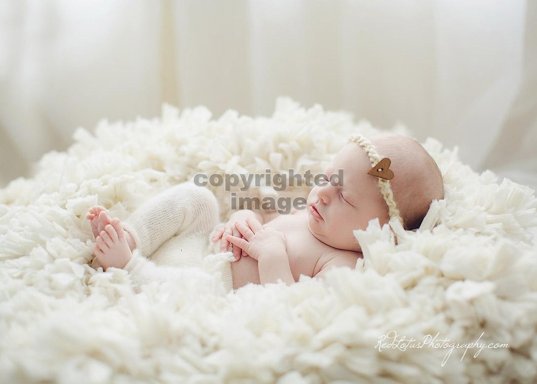 newborn-photos-pittsburgh-02