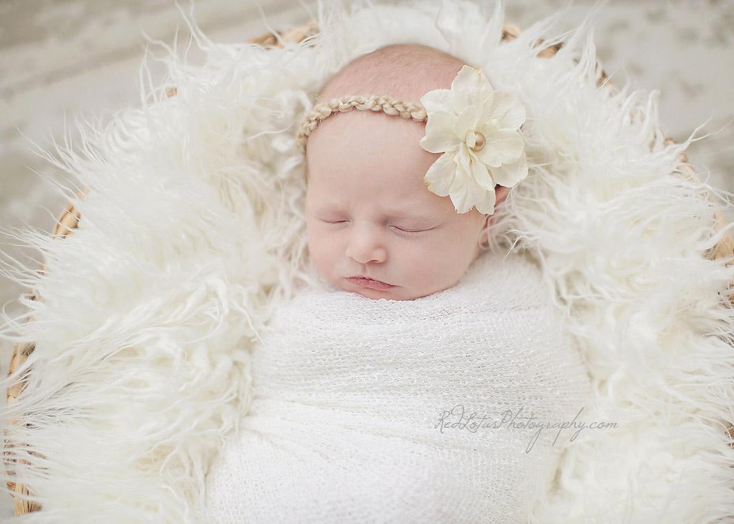 newborn-photos-pittsburgh-03