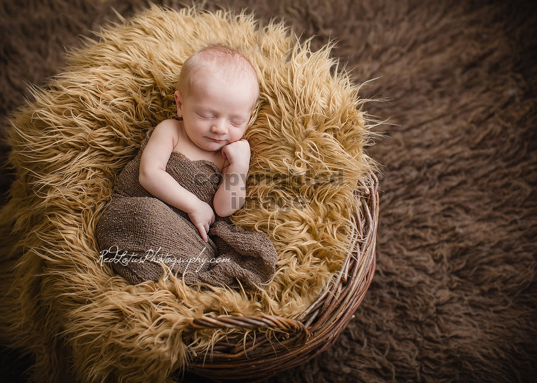 infant-photographer-Pittsburgh-02