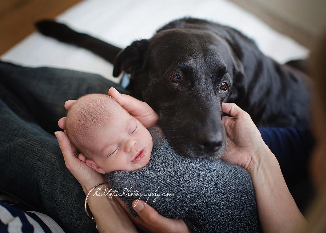 newborn-baby-photographer-03