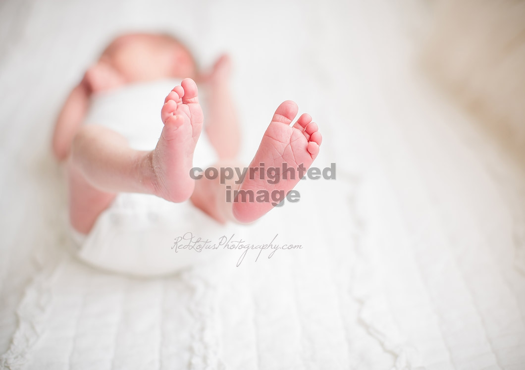 newborn-photography-pa-13