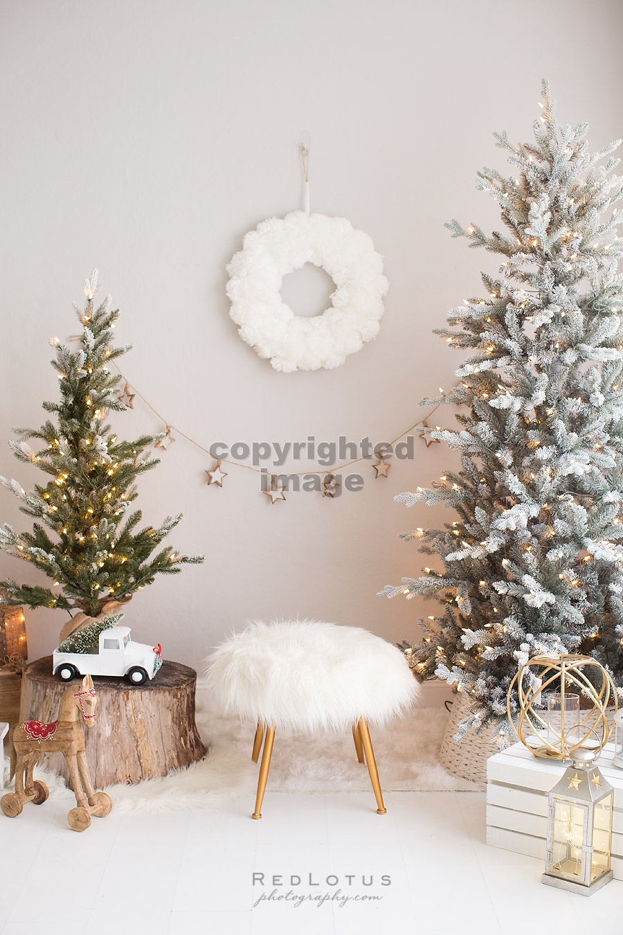 holiday photo sessions christmas minis
