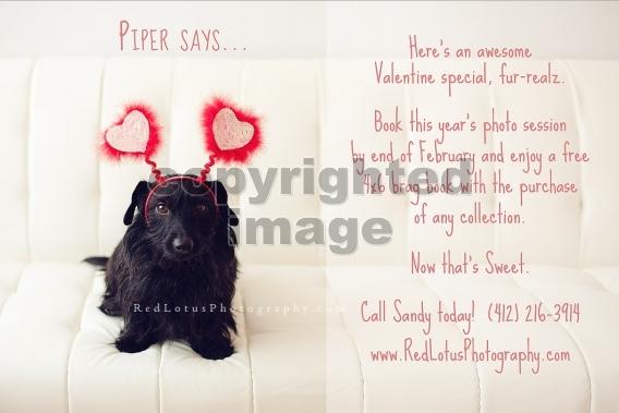 Valentines Day Baby Photo Shoot